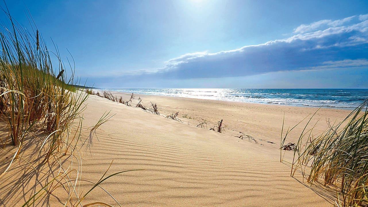 spiaggia-bibione-pineda2